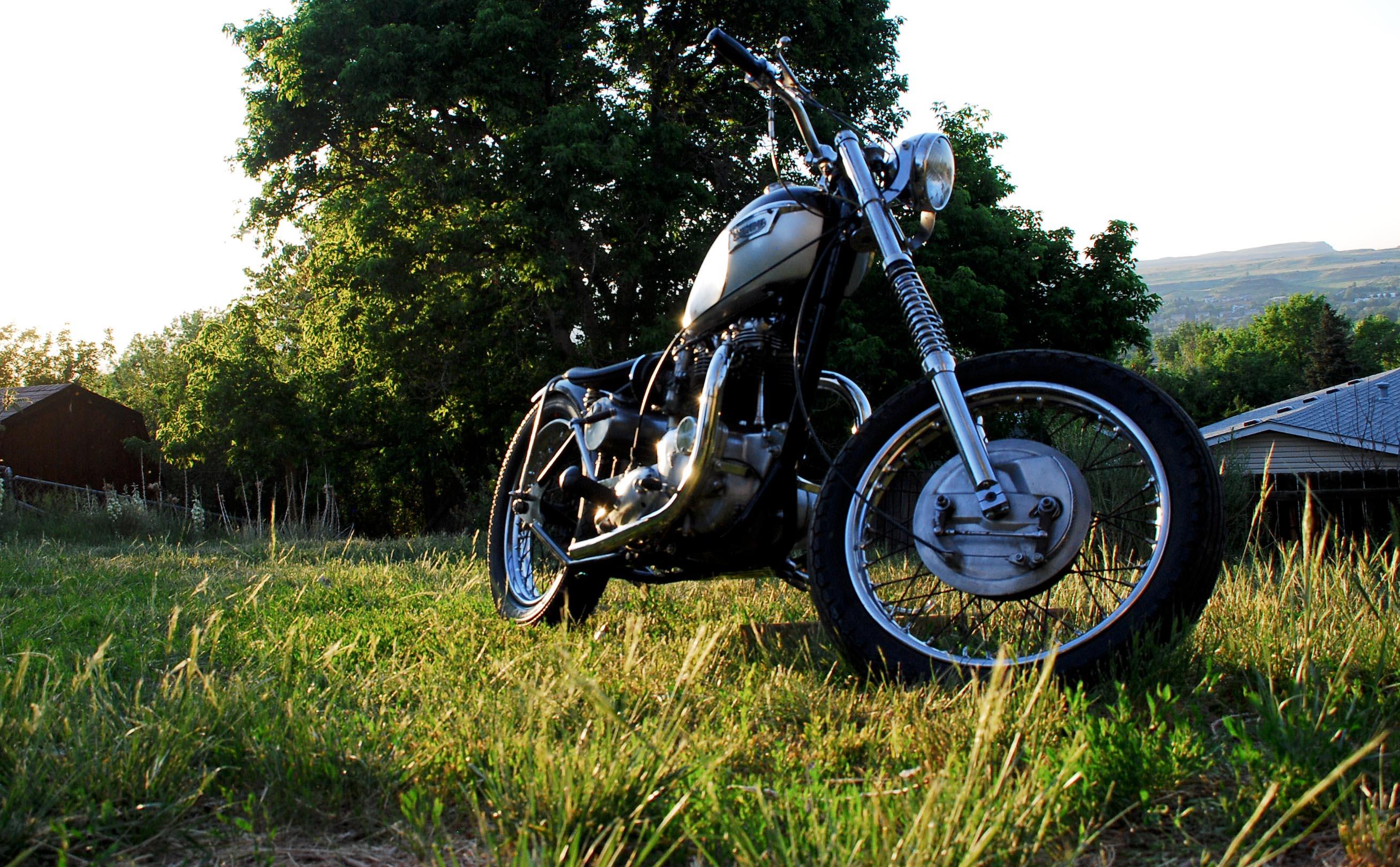 Wheelie 2-0124
